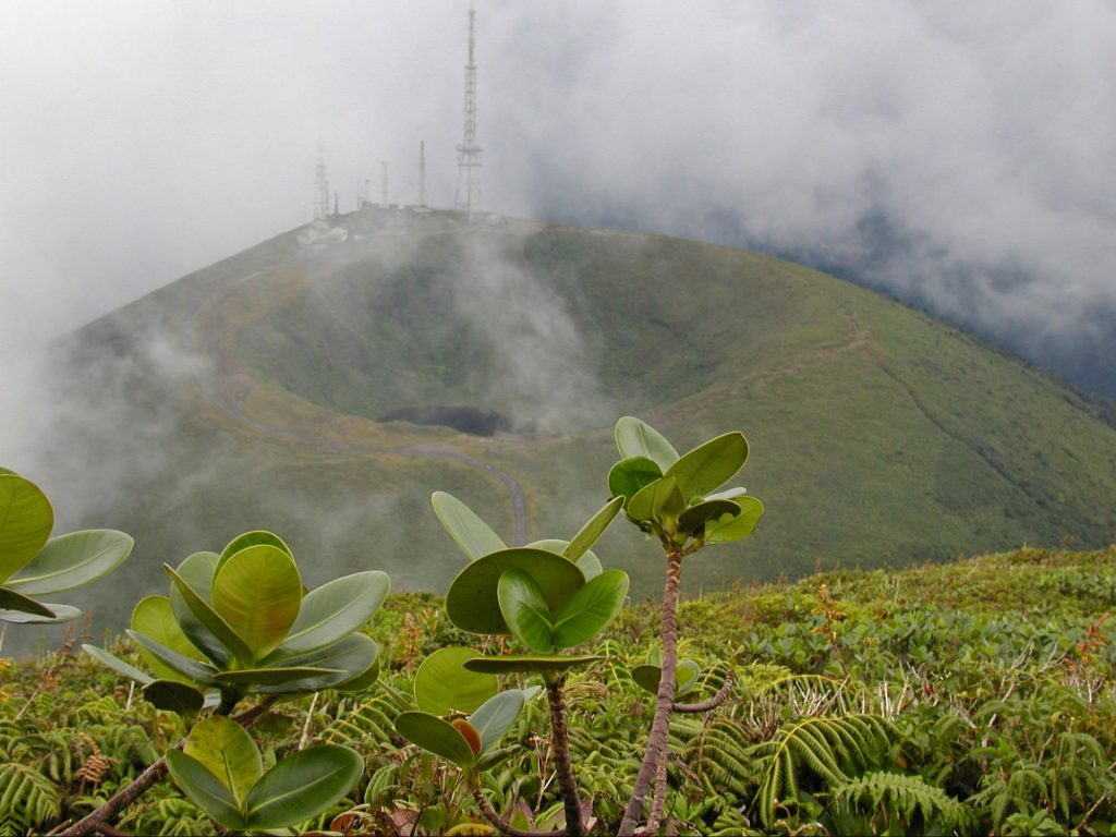 See the stunning volcano on your holidays in Guadeloupe