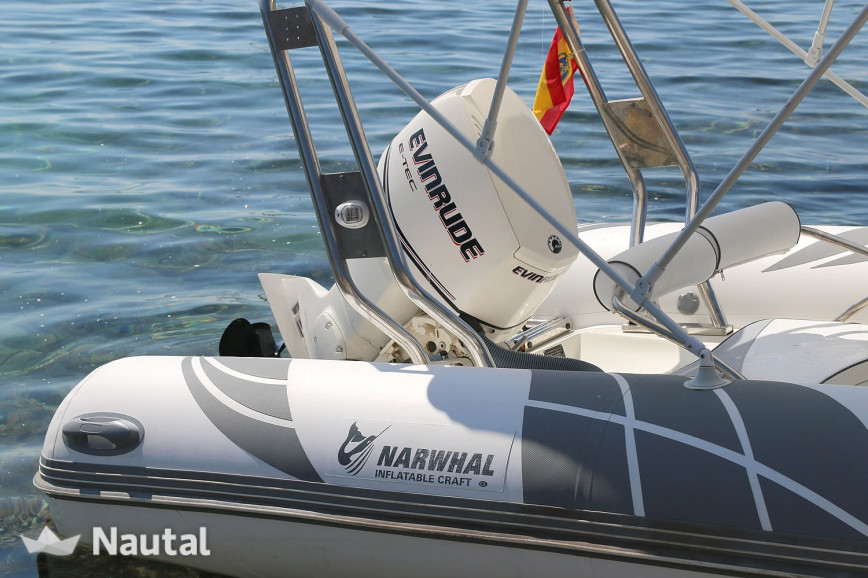Rib rent Narwhal Narwhal 520 in Ses Salines, Ibiza