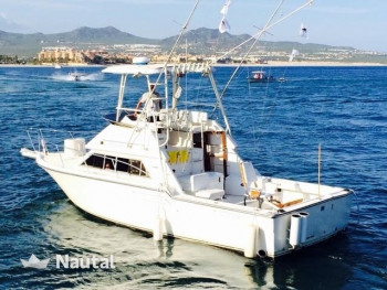 Rent this Tiara 33 fishing boat and have an unforgettable day