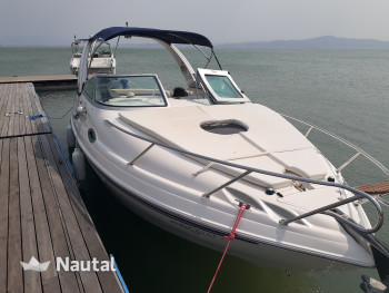 Motorboat rent FIBRAFORT Focker 255 in Jurerê Internacional, Santa Catarina
