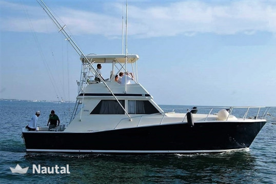 Fishing boat rent Custom made 41 in Marina Chac Chi, Cancun