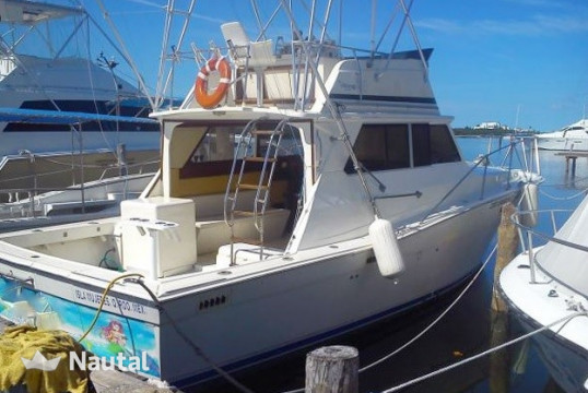 Fishing boat rent Viko yachts 35 in Isla Mujeres, Cancun