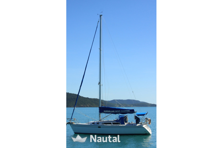 Sailing boat rent Catalina 320 in Abell Point Marina