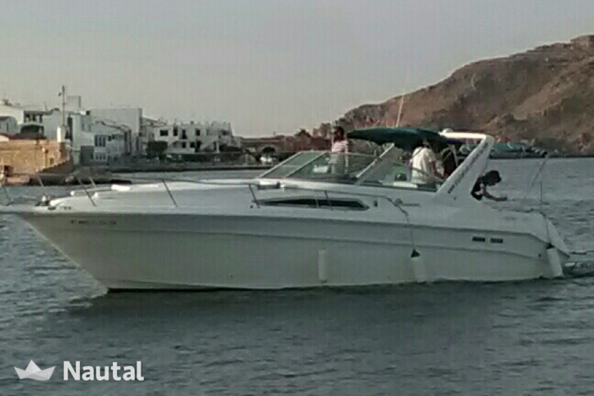 Motorboat Sea Ray for rent in Fornells