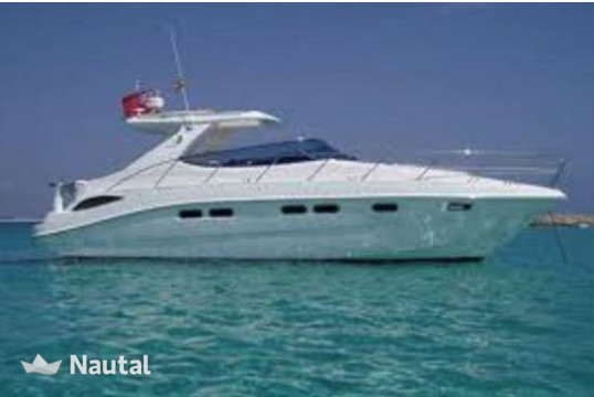 Yacht rent Sealine 42 in Port Vauban, Alpes Maritimes - Antibes