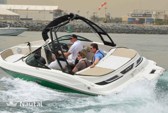 Motorboat rent Sea Ray 19 SPX in Barbat, Rab