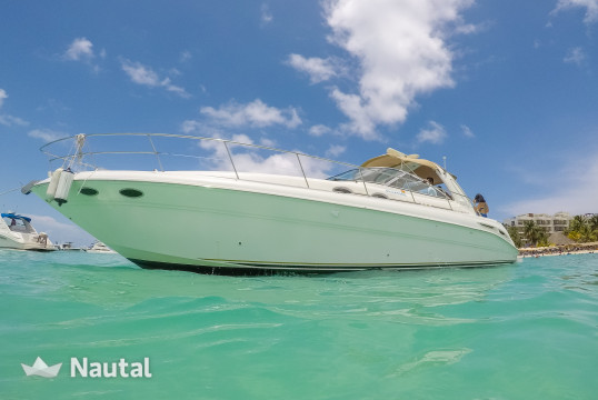 Yacht rent Sea Ray Sundancer 410 Express in Sotavento Yacht Club, Cancun