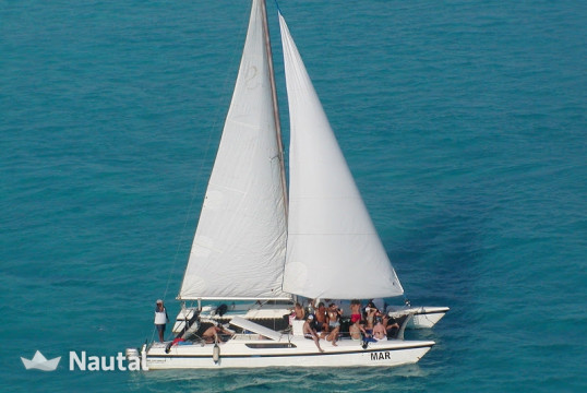 Catamaran rent Custom made 20 personas in Marina Playa Tortugas, Cancun
