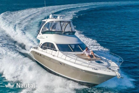 Motorboat rent SEARAY  52 ft Searay in Miami Beach, South Florida