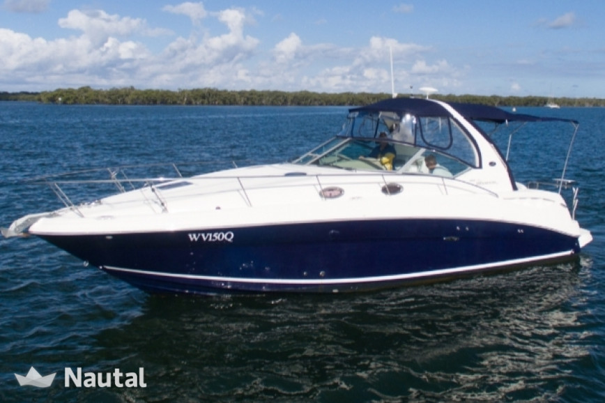 Motorboat rent Sea Ray Sundancer 355 in Torrevieja, Alicante