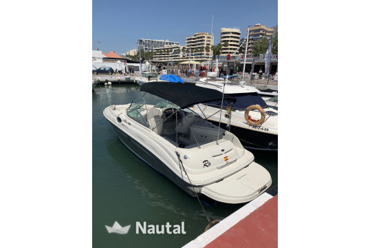 Motorboat rent Sea Ray Boats SUNDECK 240 in Puerto Deportivo de Marbella, Málaga