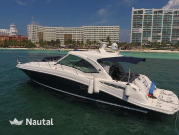 Motorboot chartern Sea Ray 48, Aquatours Marina, Cancun